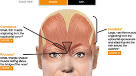 BOTOX ACADEMY® Resources | BOTOX® (onabotulinumtoxinA) for